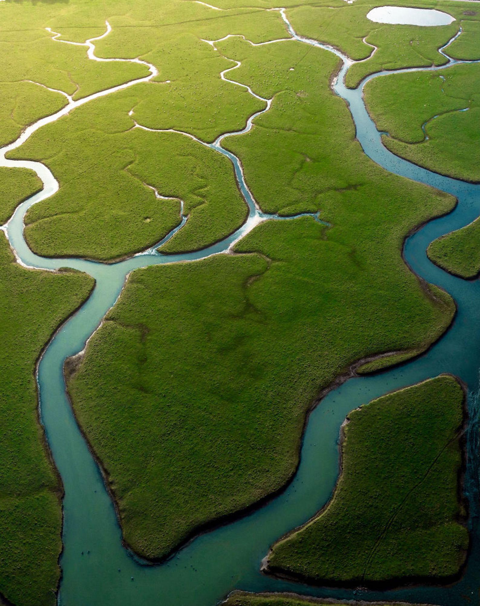 Rio Cuckmere, na Inglaterra, divide as pastagens
